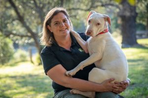 dog behaviour training illawarra